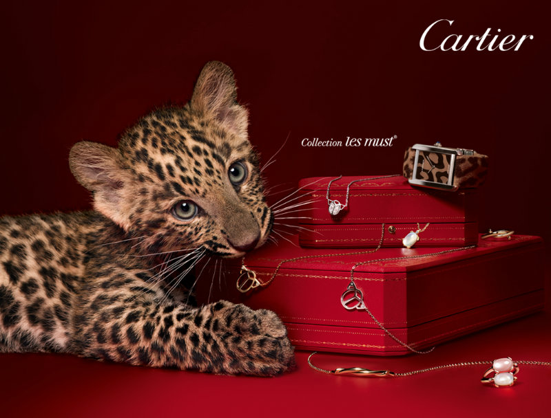 coveted-French-Business-Cartier-CartierInterna
