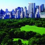 New York Insider's Guide photos