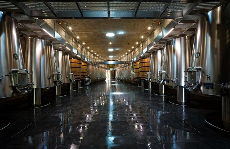 Philippe Starck's wine cellar for Château les Carmes Haut-Brion-5