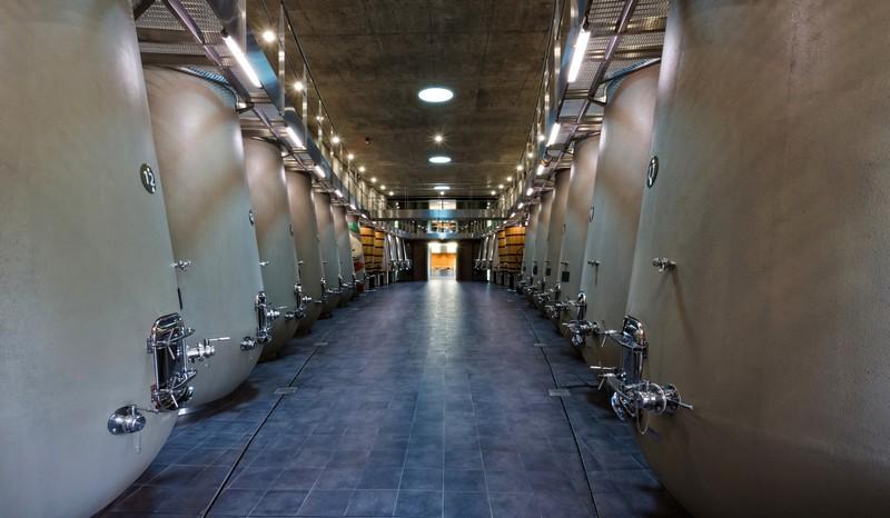 Philippe Starck's wine cellar for Château les Carmes Haut-Brion-6