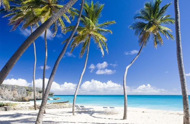 sunny christmas barbados sunny christmas The Best Destinations for a Sunny Christmas Barbados