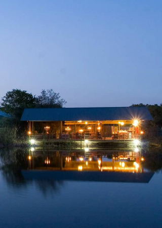 Discover the Uniqueness of the Magical Plettenberg Bay Game Reserve