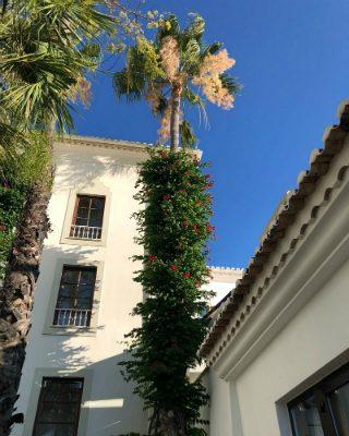 A Sneak Peek of the Marvellous Vila Vita Parc Resort & Spa in Algarve